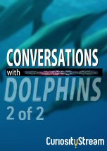 Conversations with Dolphins II
