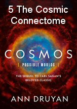 The Cosmic Connectome