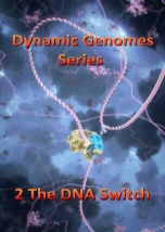 The DNA Switch