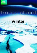 Frozen Planet: Winter