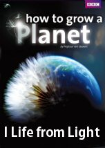 How to Grow a Planet Life from Light