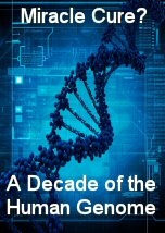 Miracle Cure: A Decade of the Human Genome