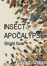 Insect Apocalypse