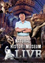 Natural History Museum Alive