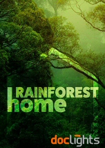 Rainforest Home