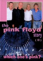 The Pink Floyd Story Which One is Pink II