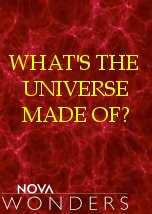 What is the Universe Made of