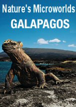 Nature Microworlds: Galapagos