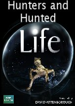 Life: Hunters and Hunted