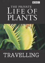 The Private Life of Plants: Travelling