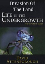 Life in the Undergrowth: Invasion Of The Land